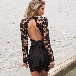 Womens Black Pink Lace Backless Deep V neck Sexy Lace Dress Embroidery Hollow Out Long Sleeve Elegant Women Party Dresses